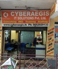 Cyberaegis