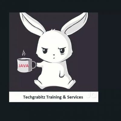 Techgrabitz Training & Services
